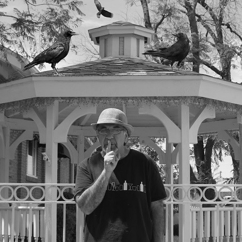 Black Crow Gazebo